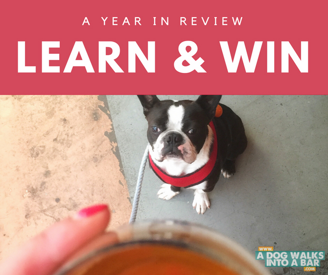 A Year of Blogging in Review and WIN Swag and a Donation