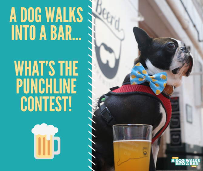 A Dog Walks into a Bar...What's the Punchline Contest
