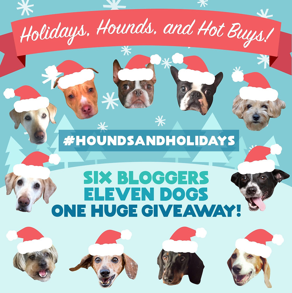 Holidays hounds and hot buys Holiday Gift Guide