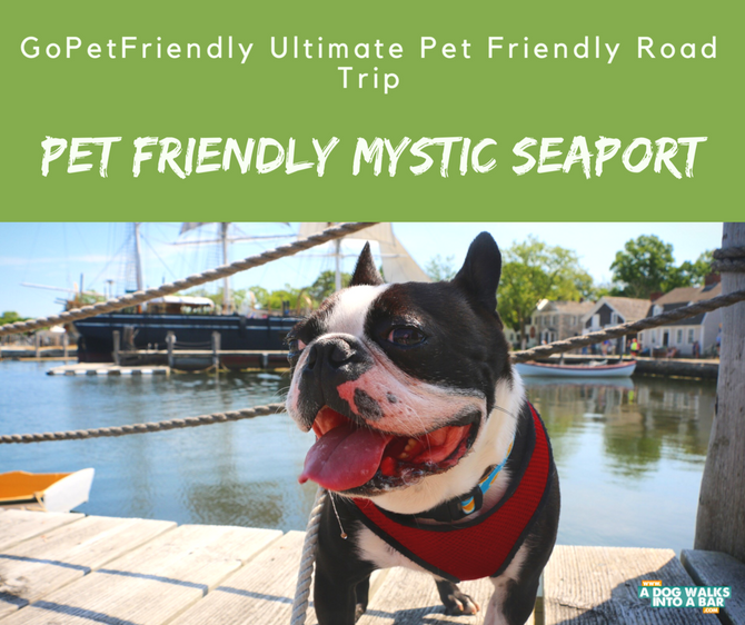 Pet Friendly Mystic Seaport and Giveaway