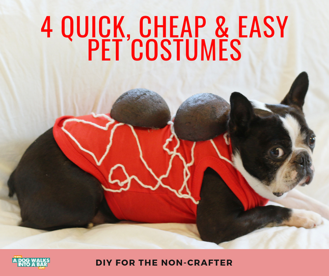 Four Quick, Cheap and Easy DIY Dog Costumes