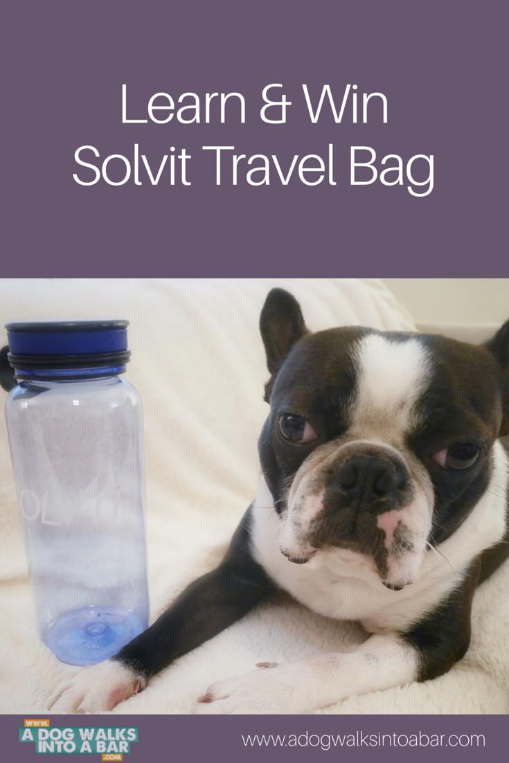 Travel water bottle from Solvit