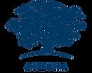 logo ashoka.png