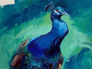 Peacock _  Acrylic _ Paper _ 25 x 35 _ Available _ £85