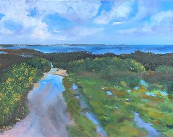 Studland _ Oil _ Canvas _ 40 x 51 _ Available _ £250