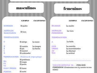 Gender of Spanish nouns