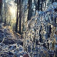 Workshop | Fit durch den Winter