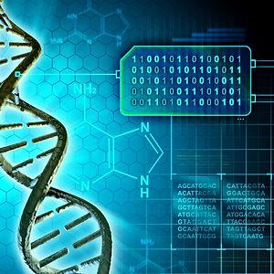 Bioinformatics-2.jpg