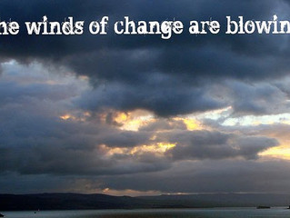 The Winds of Change: How We Can Adapt And Grow In Any Season
