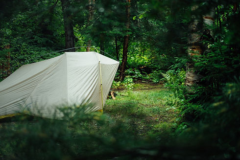 camping forest.jpg
