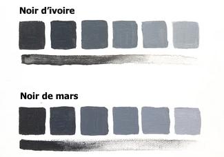Noir d'ivoire ou noir de mars