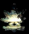 CBD FTP logo.png