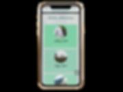 iphone-xs-mockup-22485 (10).png