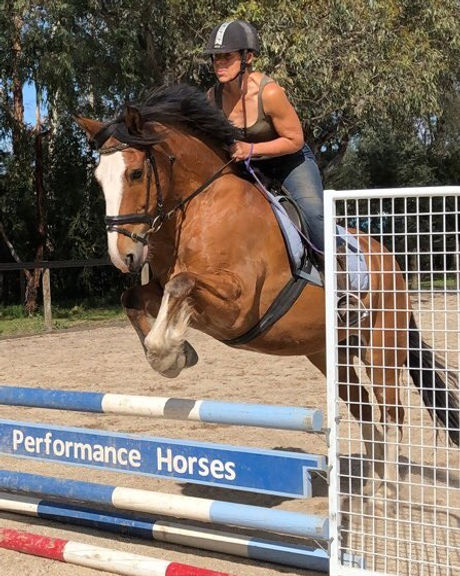 Show jumping lessons