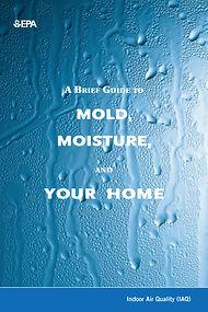 Mold Guide-1.jpg