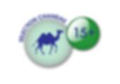 15+ _ logo-1.png