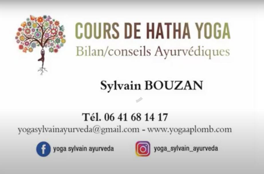 carte Sylvain.png
