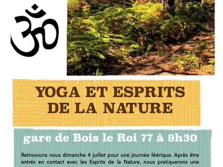 Yoga en Forêt pour fêter l'été