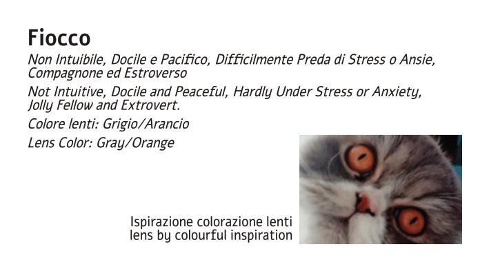 Libricino AnnaMaria 2020 low.pdf-20