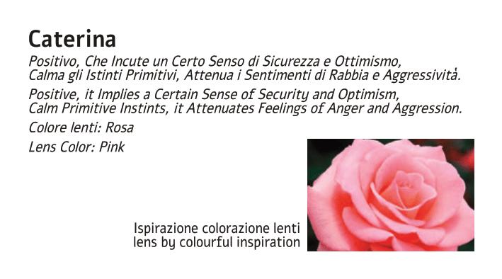 Libricino AnnaMaria 2020 low.pdf-06