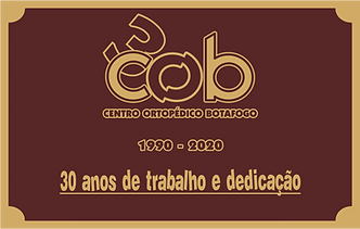 30x19   30 anos.png