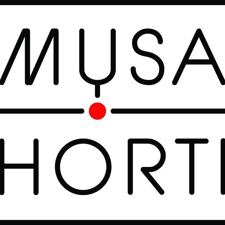 Musa Horti op KNAL! stadsfestival