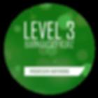 LEVEL 3 WEB.png