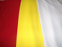 Jersey Deportivo varios colores