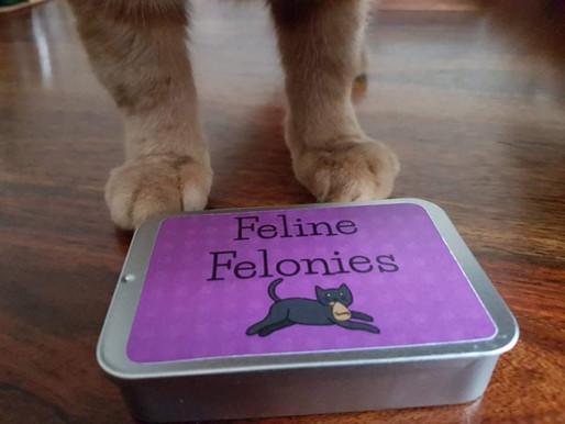 Feline Felonies - Purrfectly Pawesome Play!