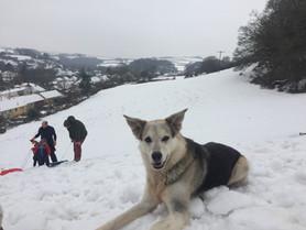 Snow Heroes