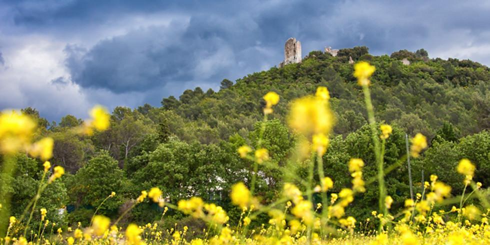 Mini séances Garéoult ou Château de Forcalqueiret