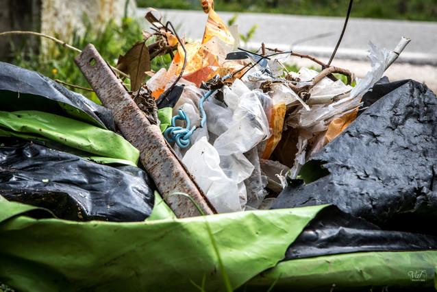 Saleté urbaine-sans eau, que de poubelles.jpg