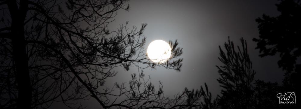 Lune-001.jpg
