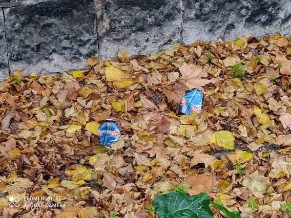 Saleté urbaine- feuilles d'automne.jpg