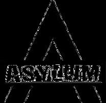 Asylum Stunts Chicago Home