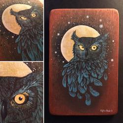 'Night Owl' 2017