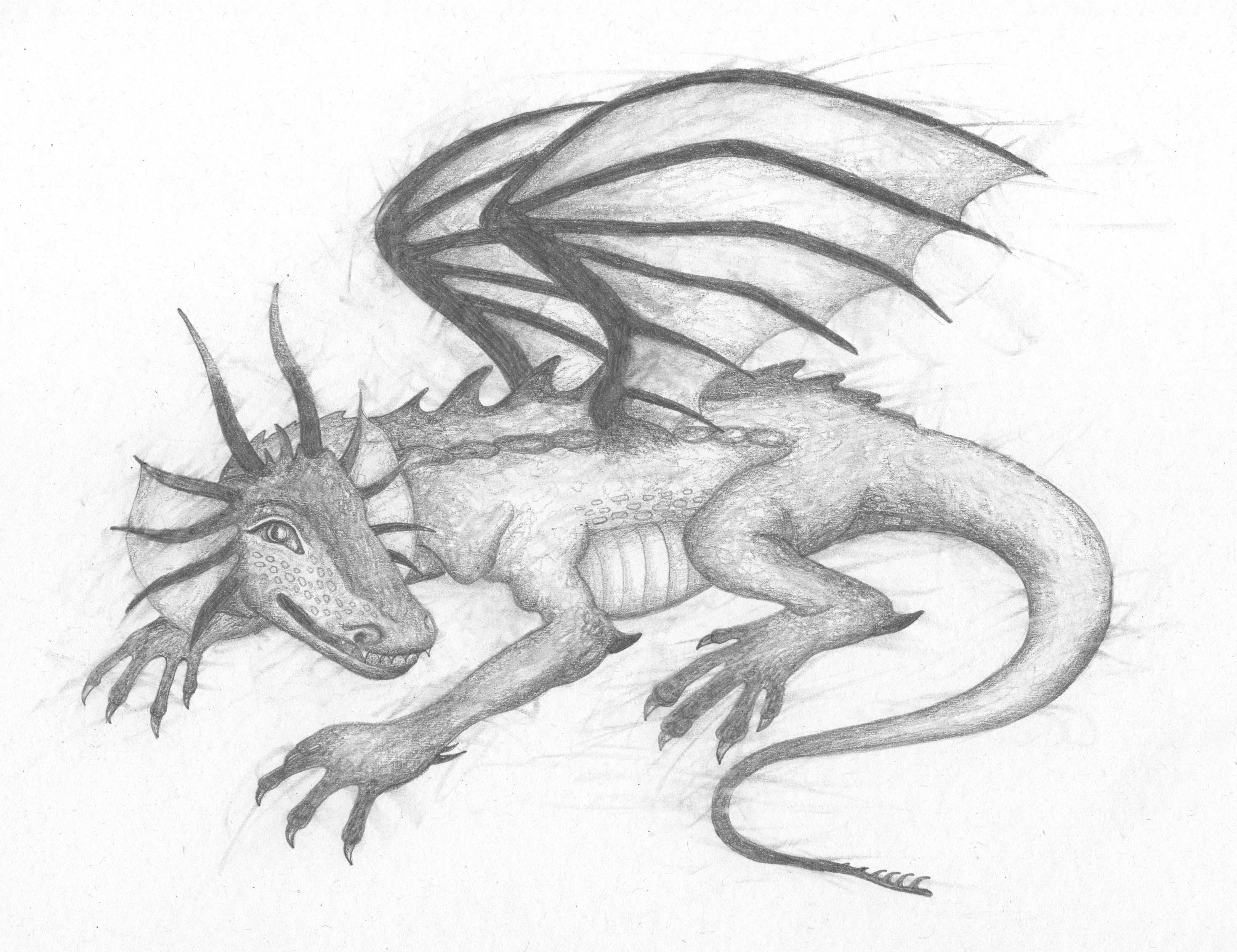 'Gorbash the Dragon'
