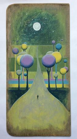 """Moonlit Walk'"