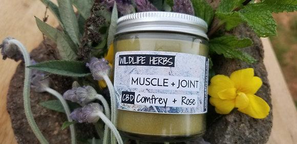 Muscle + Joint CBD Comfrey + Rose