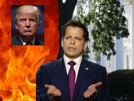 Trump Burning the White House (#45)
