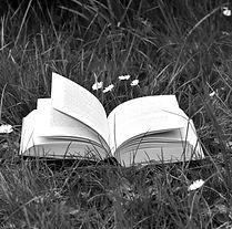 libroprato_edited.jpg