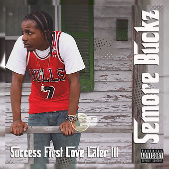 success first love later, vol.3.jpg
