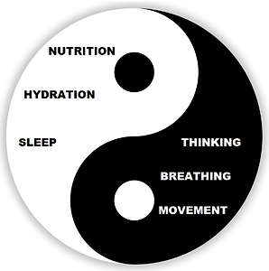 6 foundation principles.png