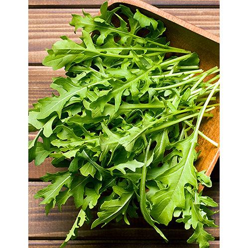 Mr. Fothergill's Packet Seeds Rocket Salad