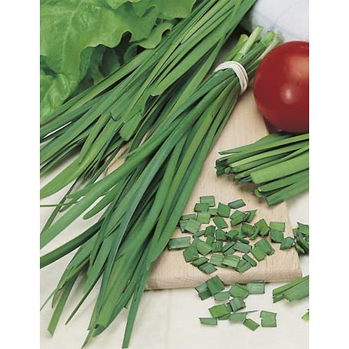 Mr. Fothergill's Packet Seeds Chives Garlic