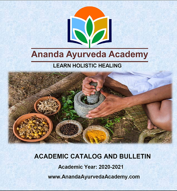 AAA Course Catalog .png