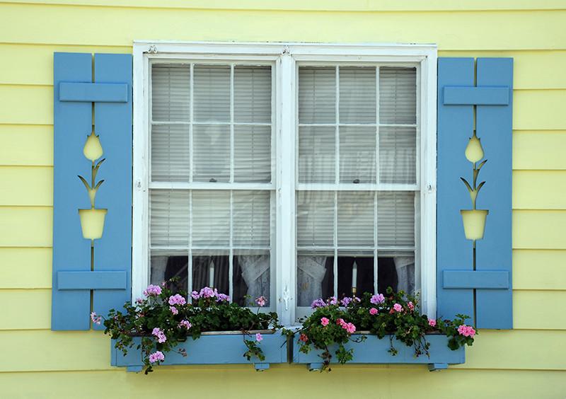 Blue wooden window shutters with flower box