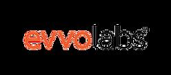 EvvoLabs_group_logo[woTagline]-01_edited