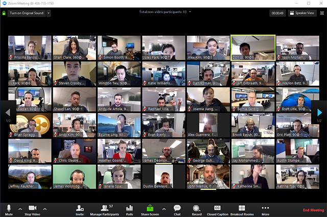virtual conferences on Zoom