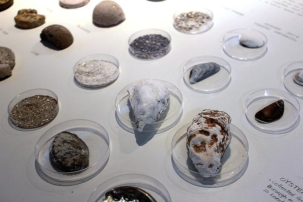 Sea-Stone_materials.png